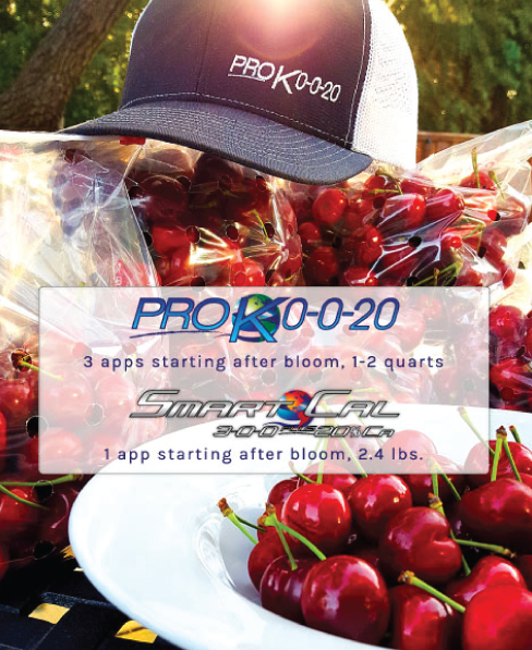 bloom spray fertilizer