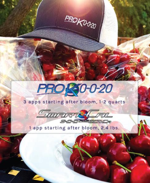 bloom spray fertilizer