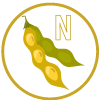 plant-derived-n-icon