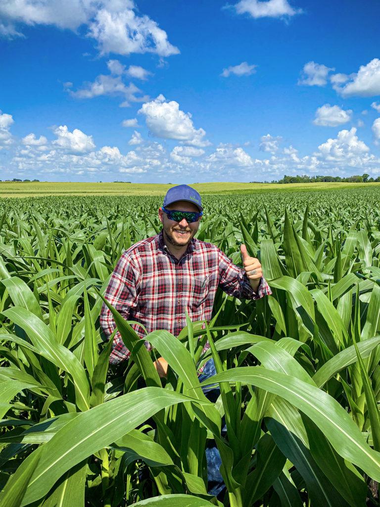 Organic Sweet Corn Results